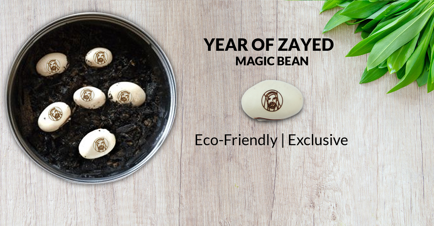 Year of Zayed Magic Bean