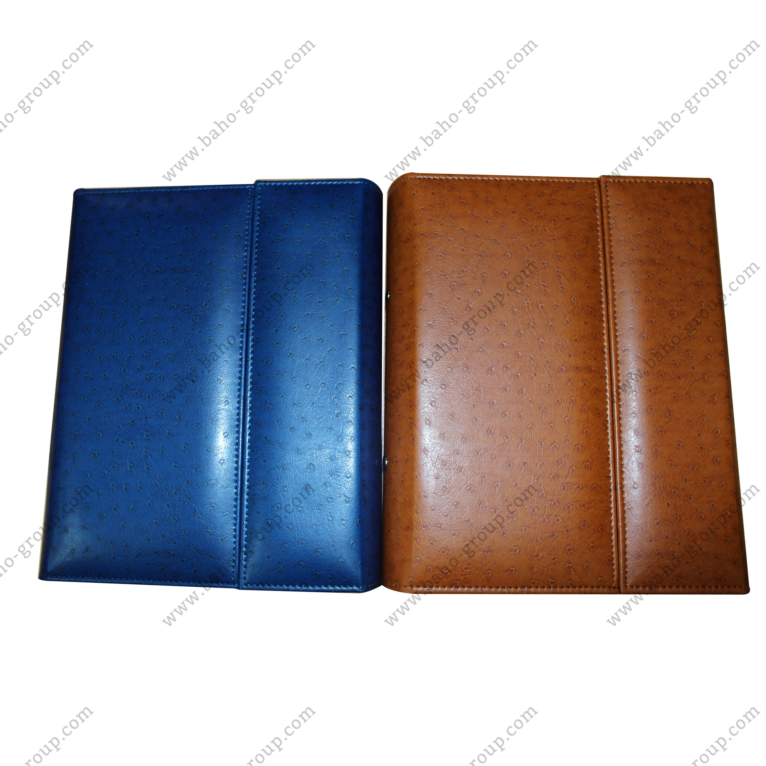 2 in 1 iPad Holder with Ringbinder
